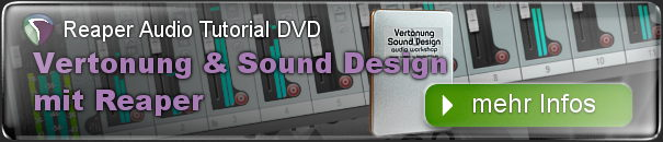 Tutorial Vertonung und Sound Design mit Reaper - Audiobearbeitung