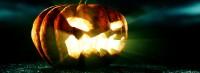 thumb_tut_pumpkin